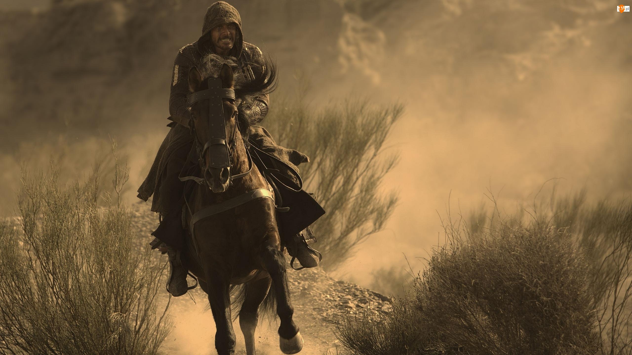 Film, Koń, Assassin's Creed, Michael Fassbender