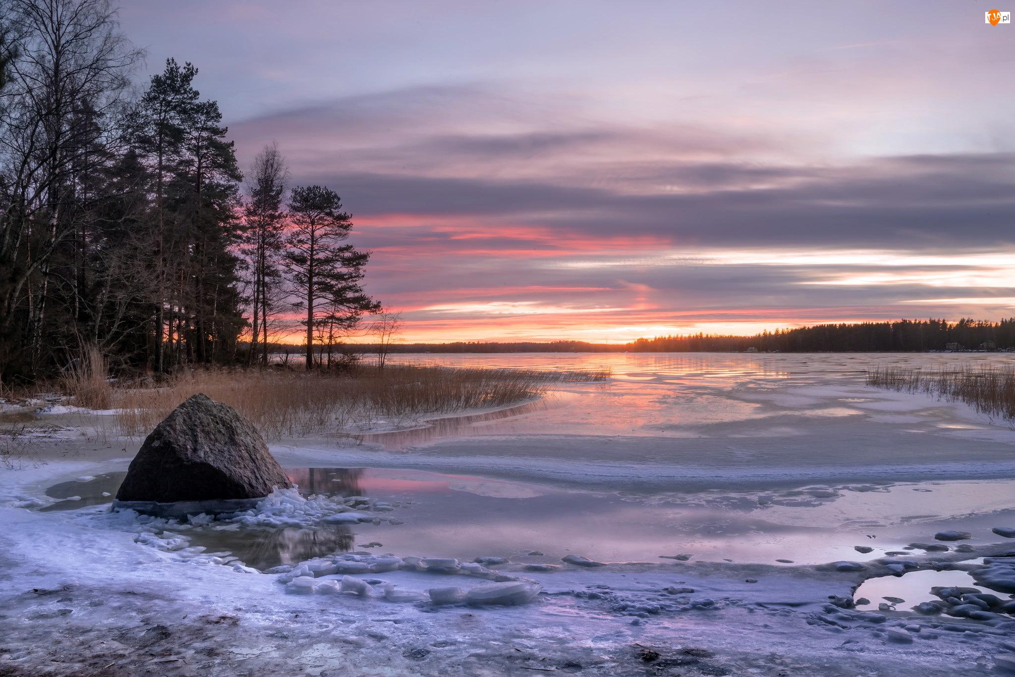 Drzewa, Zachód słońca, Miasto Kotka, Finlandia, Kamień, Zatoka Fińska, Zima