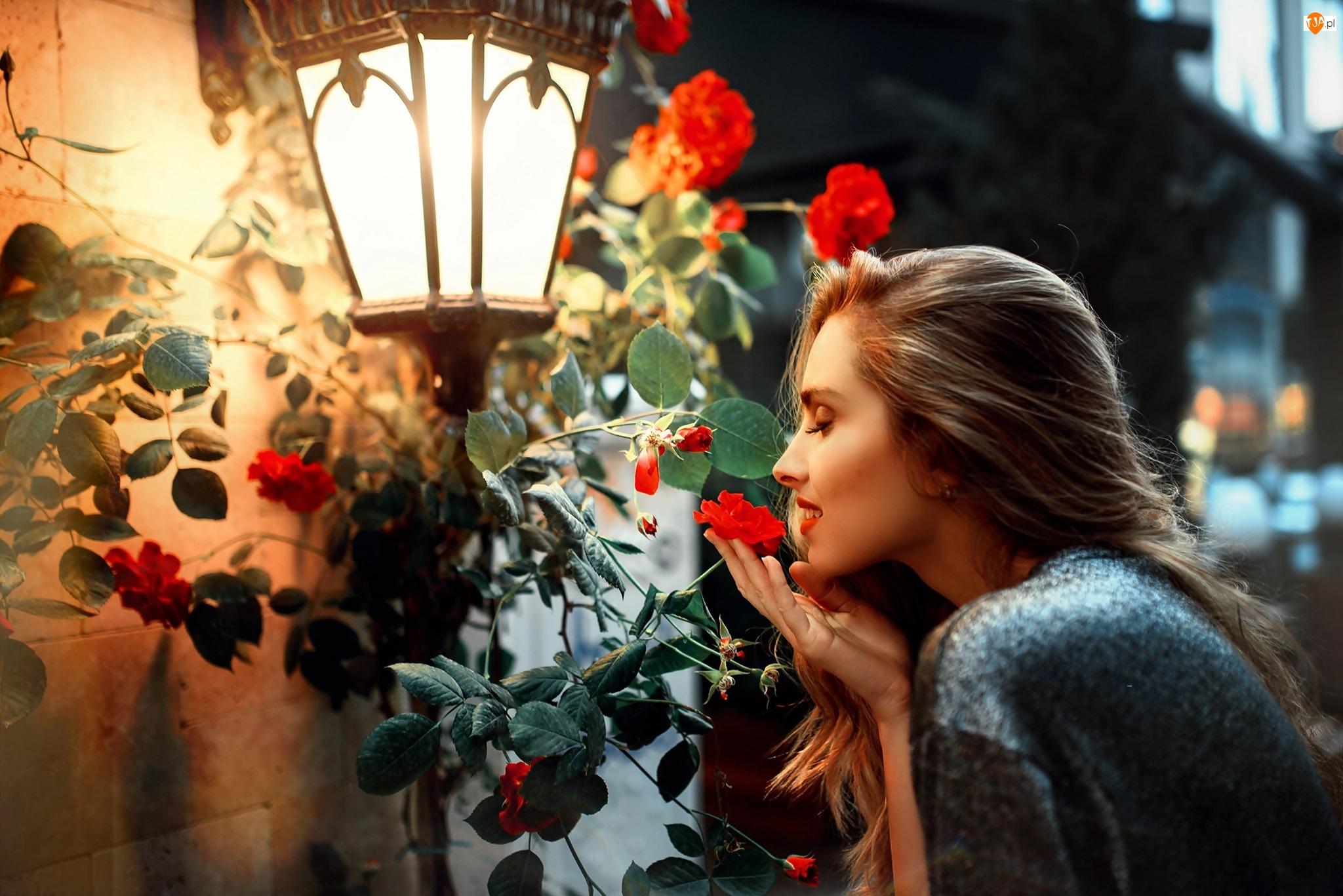 Róże, Kobieta, Latarnia uliczna, Kwiaty, Kwiaty