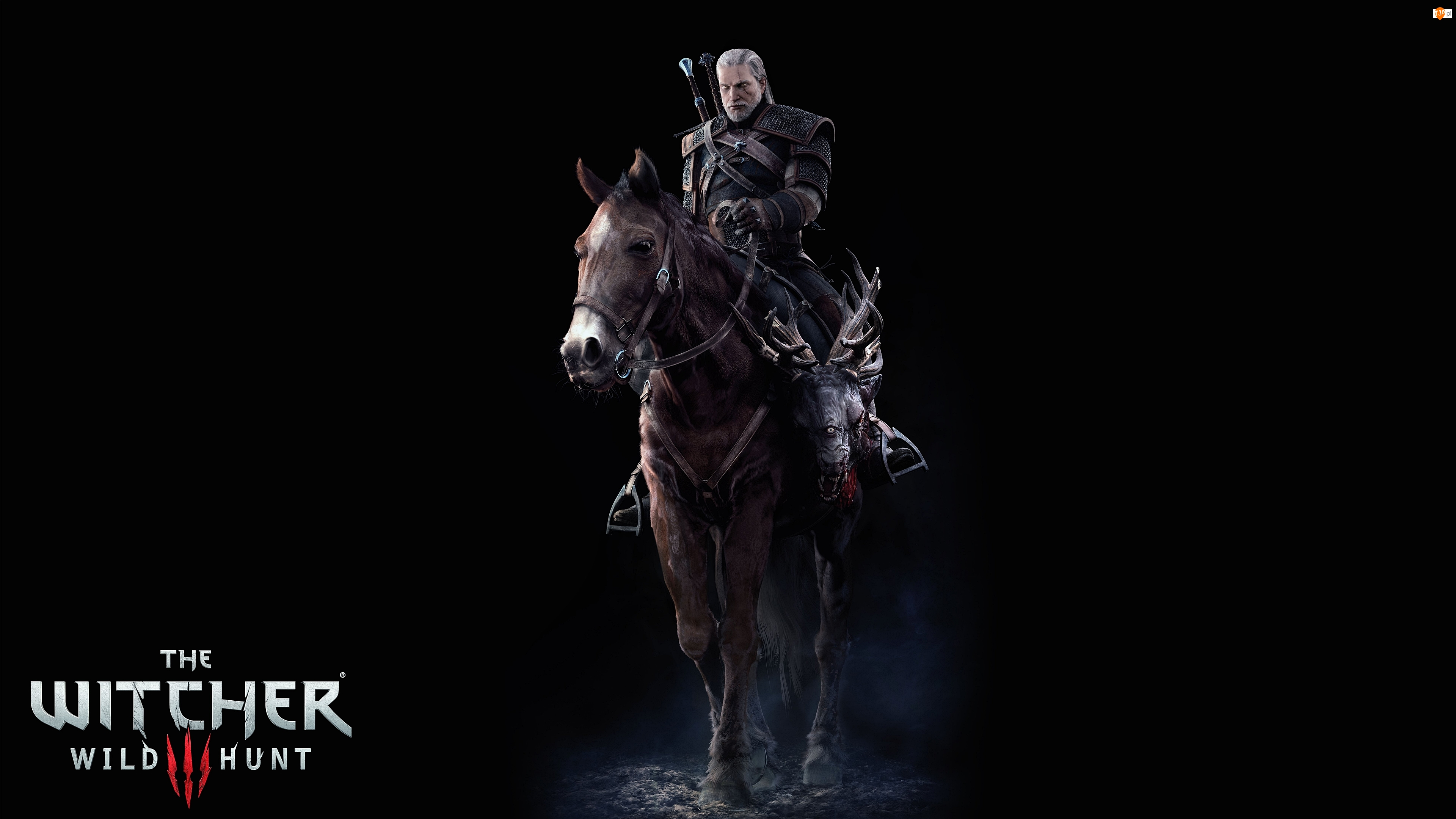 Gra, Koń, Wiedźmin 3: Dziki Gon, The Witcher 3 Wild Hunt