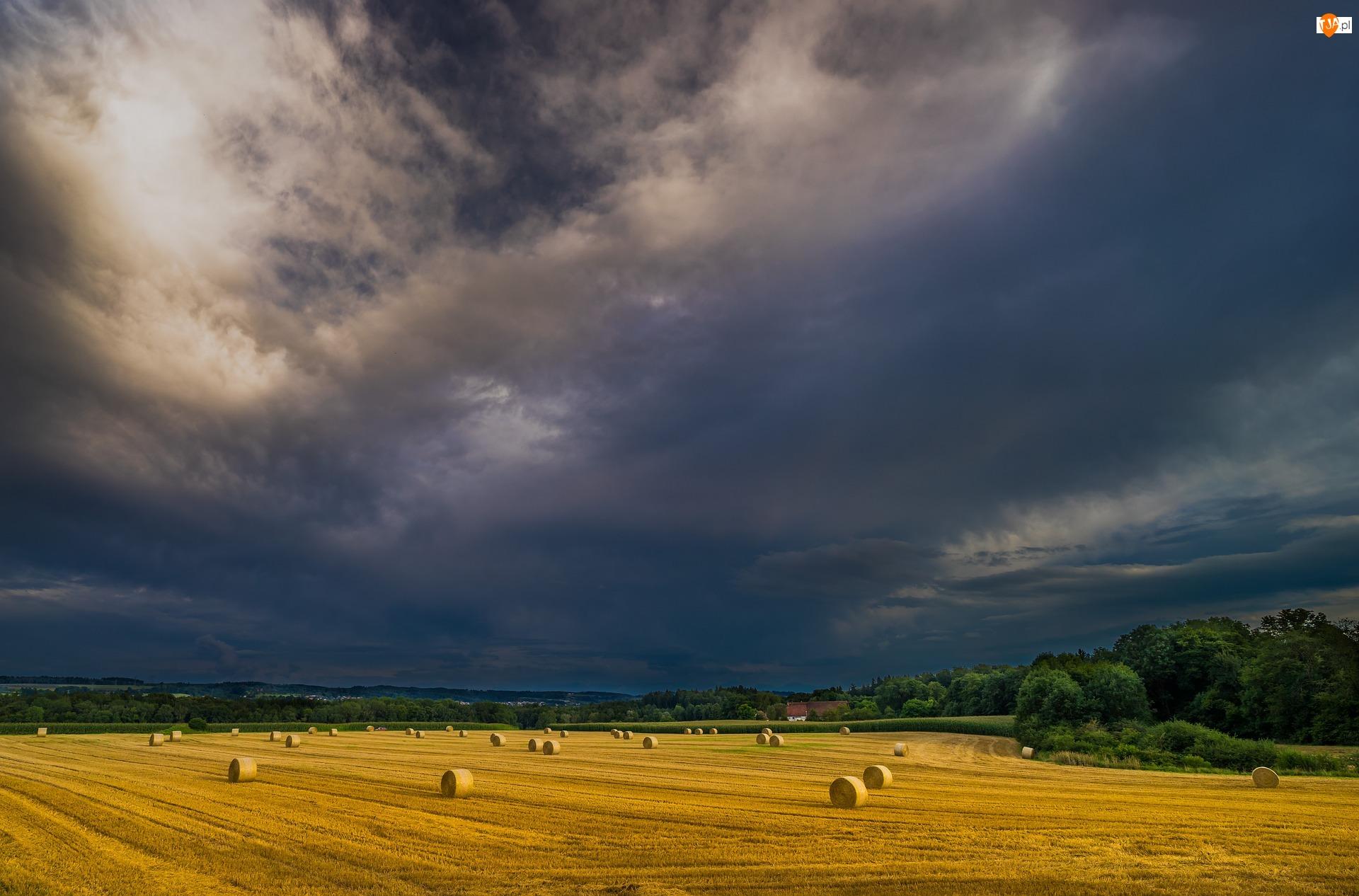 Farma, Chmury, Niebo, Zachmurzone, Drzewa, Ciemne, Pola