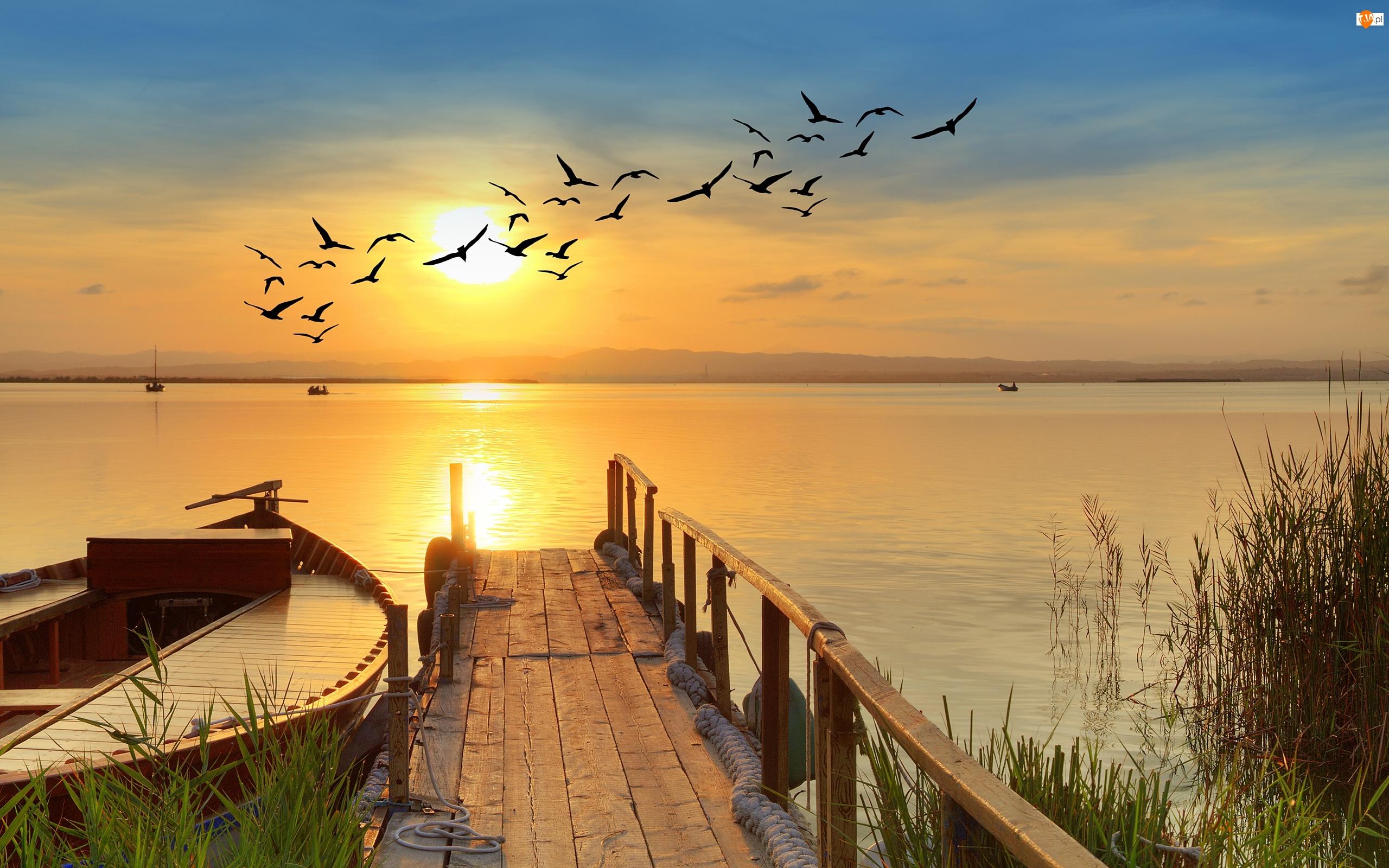 Ptaki, Jezioro, Łódki, Wschód słońca, Pomost