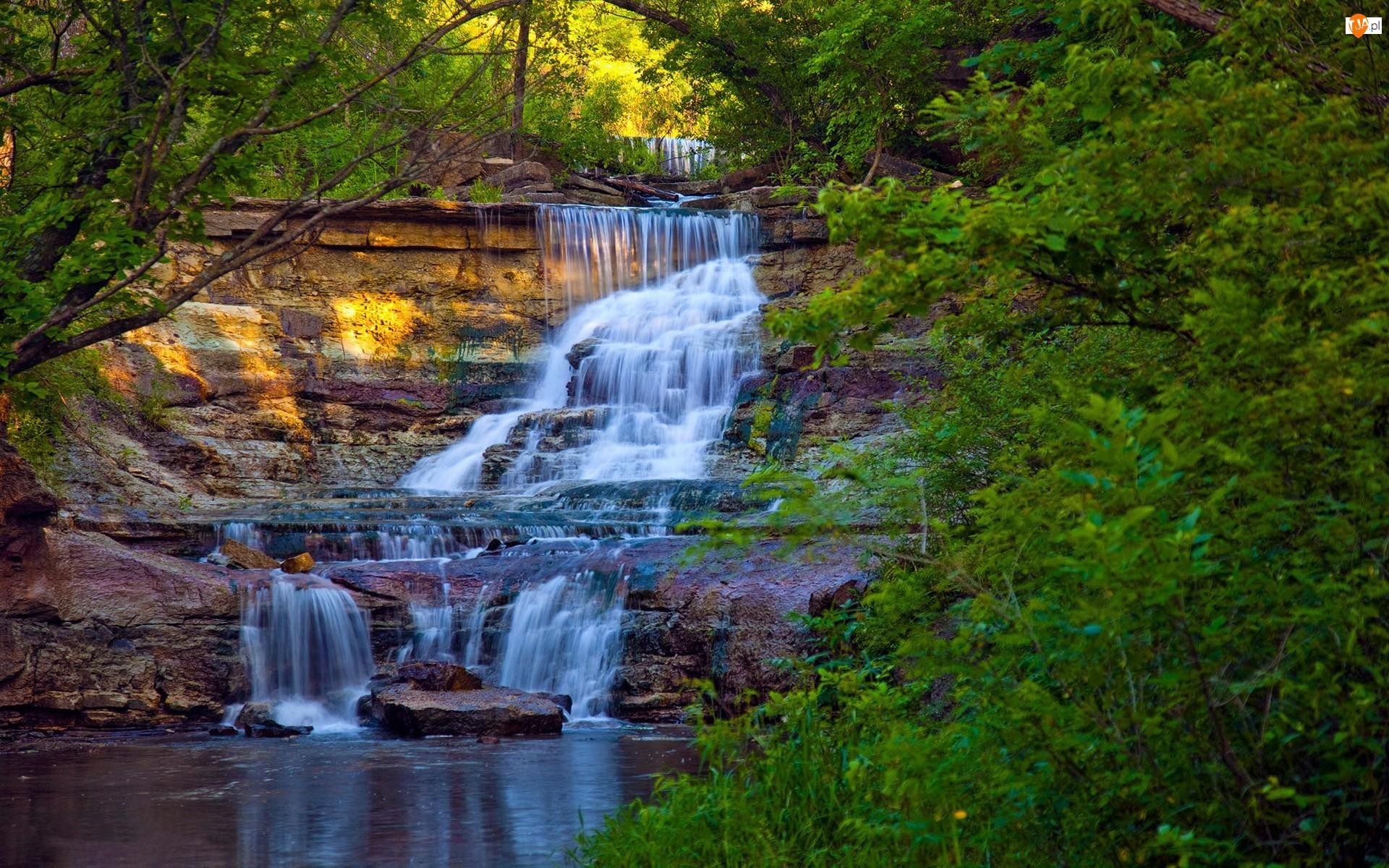 Wodospad Prather Creek Falls, Skały, Stany Zjednoczone, Drzewa, Stan Kansas, Las