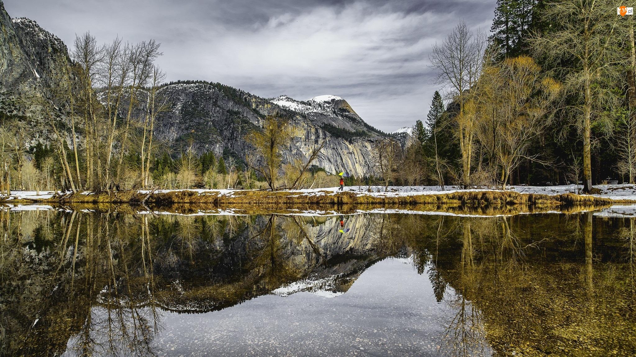 Góry, Rzeka Merced, Kalifornia, Człowiek, Stany Zjednoczone, Odbicie, Park Narodowy Yosemite, Drzewa