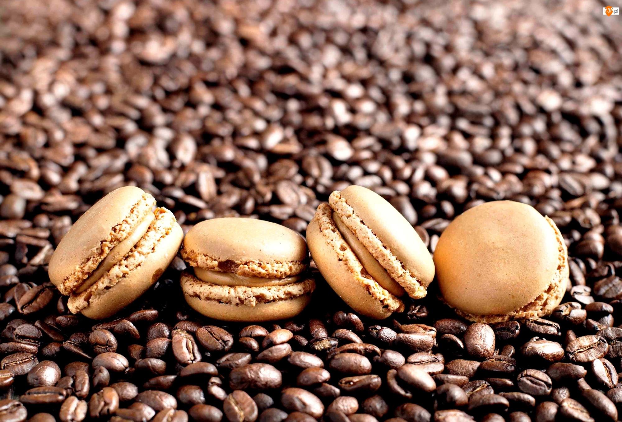 Ciasteczka, Kawy, Makaroniki, Ziarna