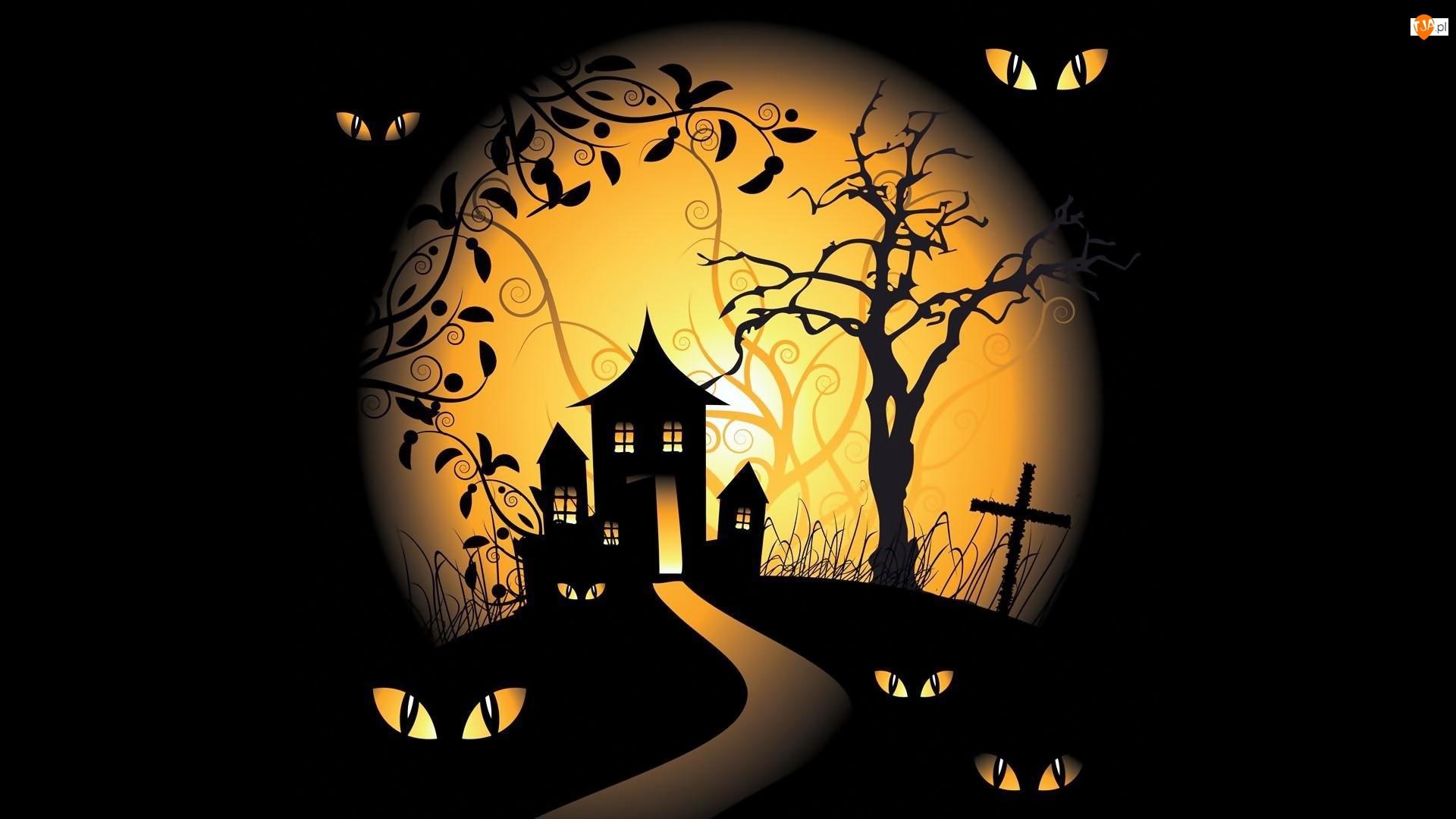 Halloween, 2D, Dom, Droga