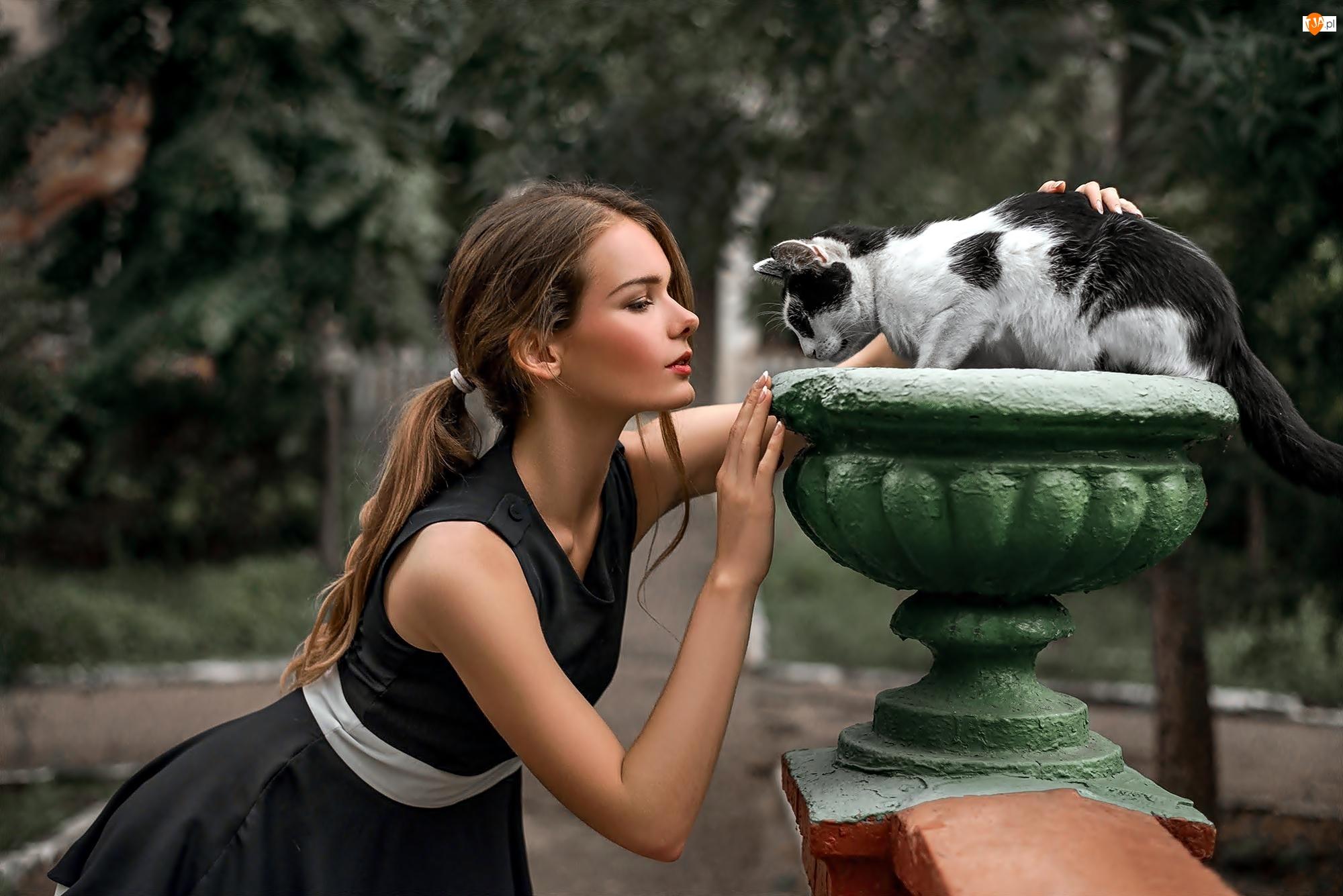 Park, Kobieta, Kot