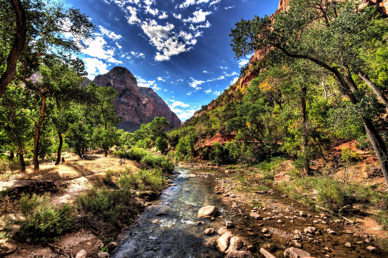 Park Narodowy Zion, Rzeka, Stany Zjednoczone, Las, Stan Utah, Góry