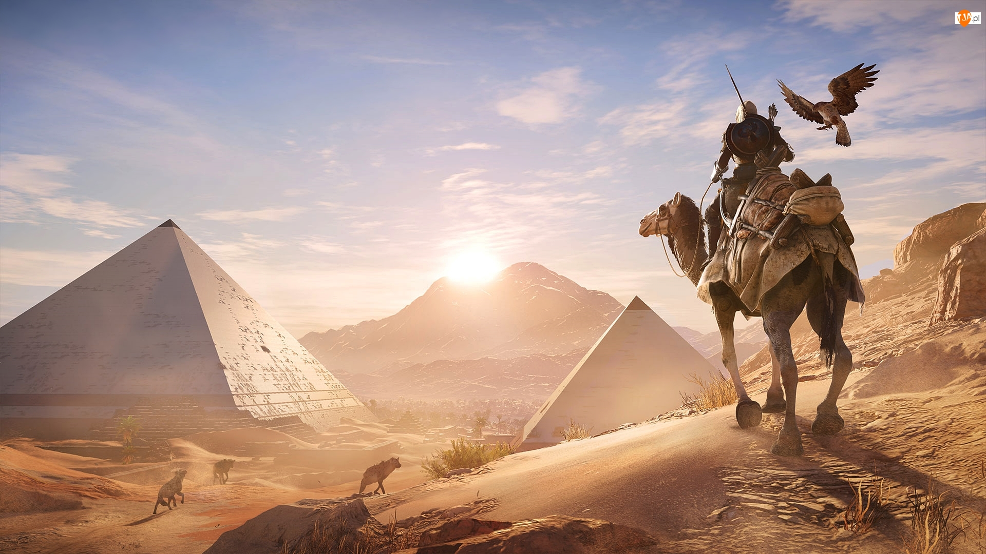 Piramidy, Gra, Bayek, Assassins Creed: Origins, Wielbłąd