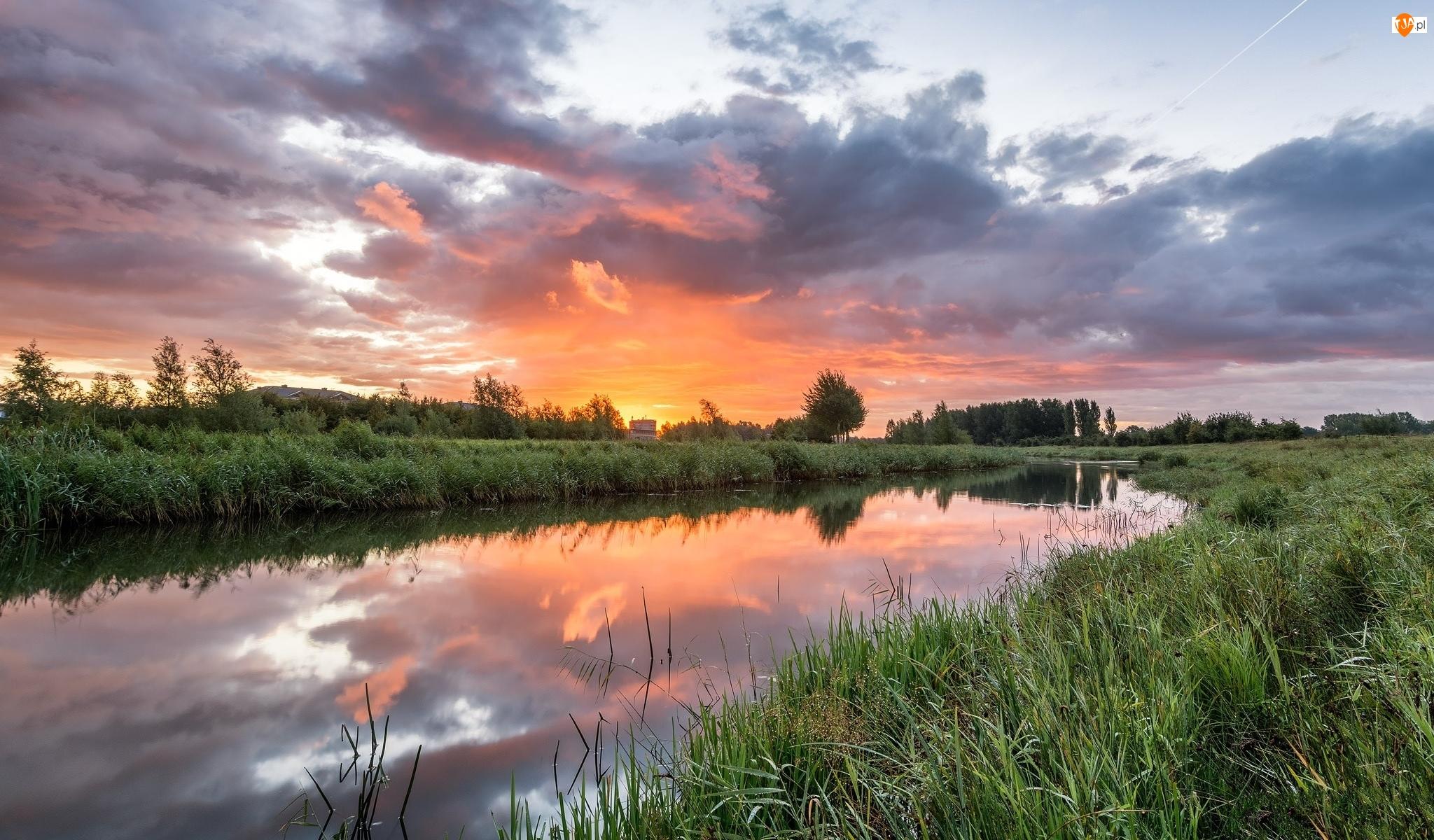 Zachód słońca, Rzeka, Trawy, Drzewa, Chmury