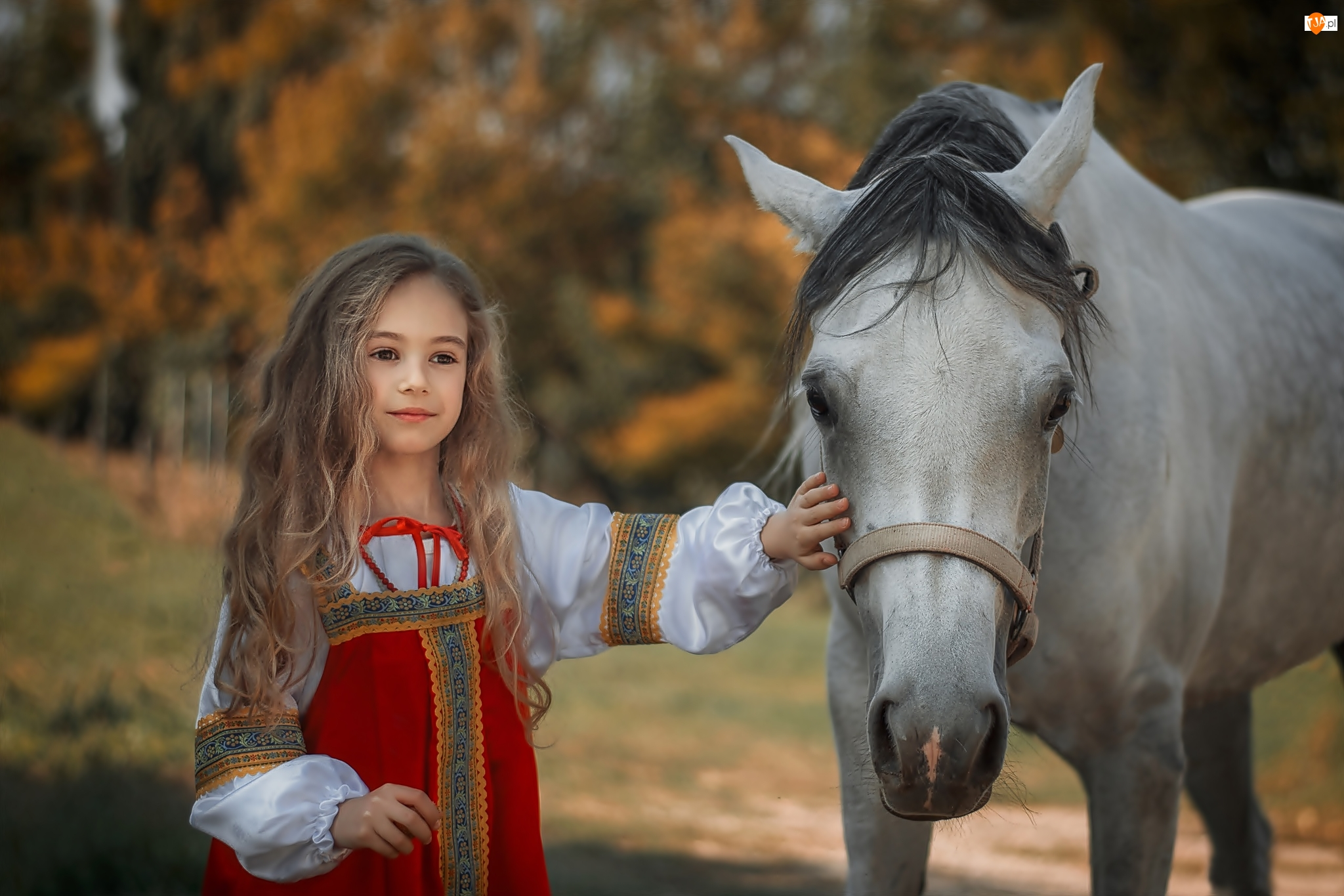 Uzda, Dziewczynka, Włosy, Długie, Koń