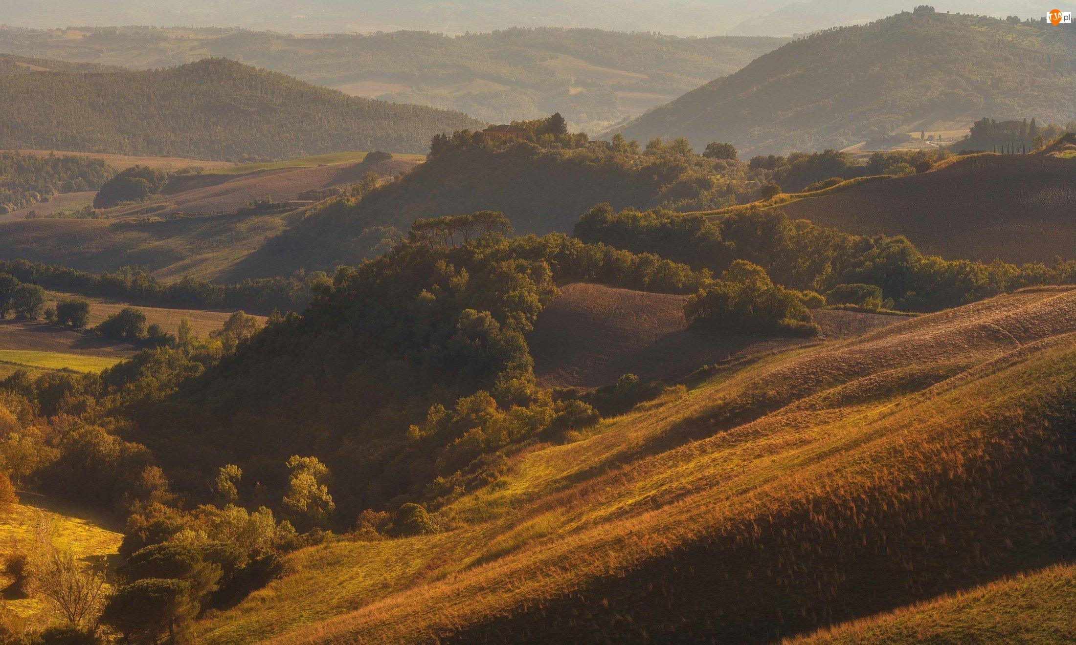 Wzgórza, Drzewa, Włochy, Domy, Toskania, Jesień