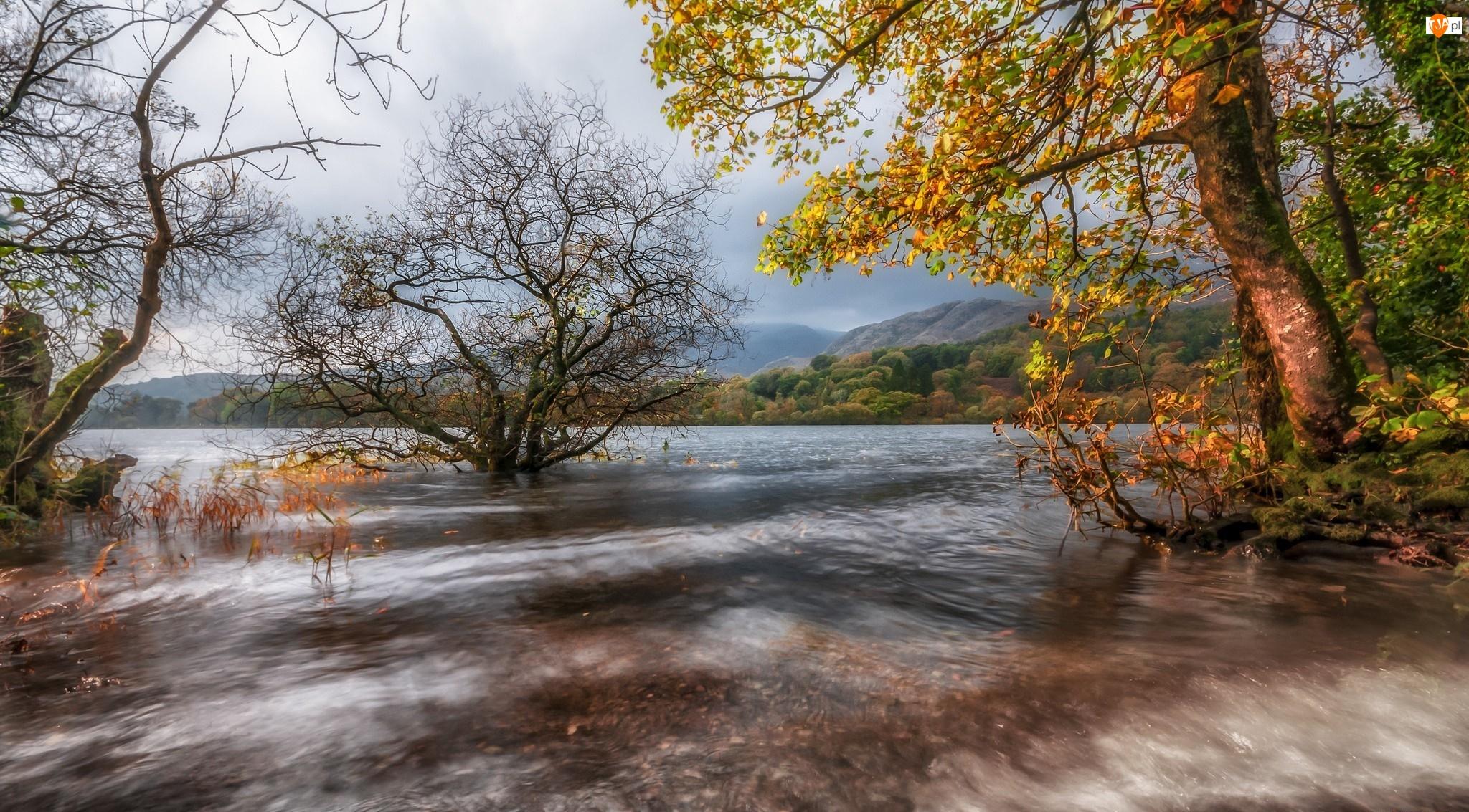 Wzgórza, Rzeka, Kumbria, Anglia, Jesień, Wieś Coniston, Drzewa
