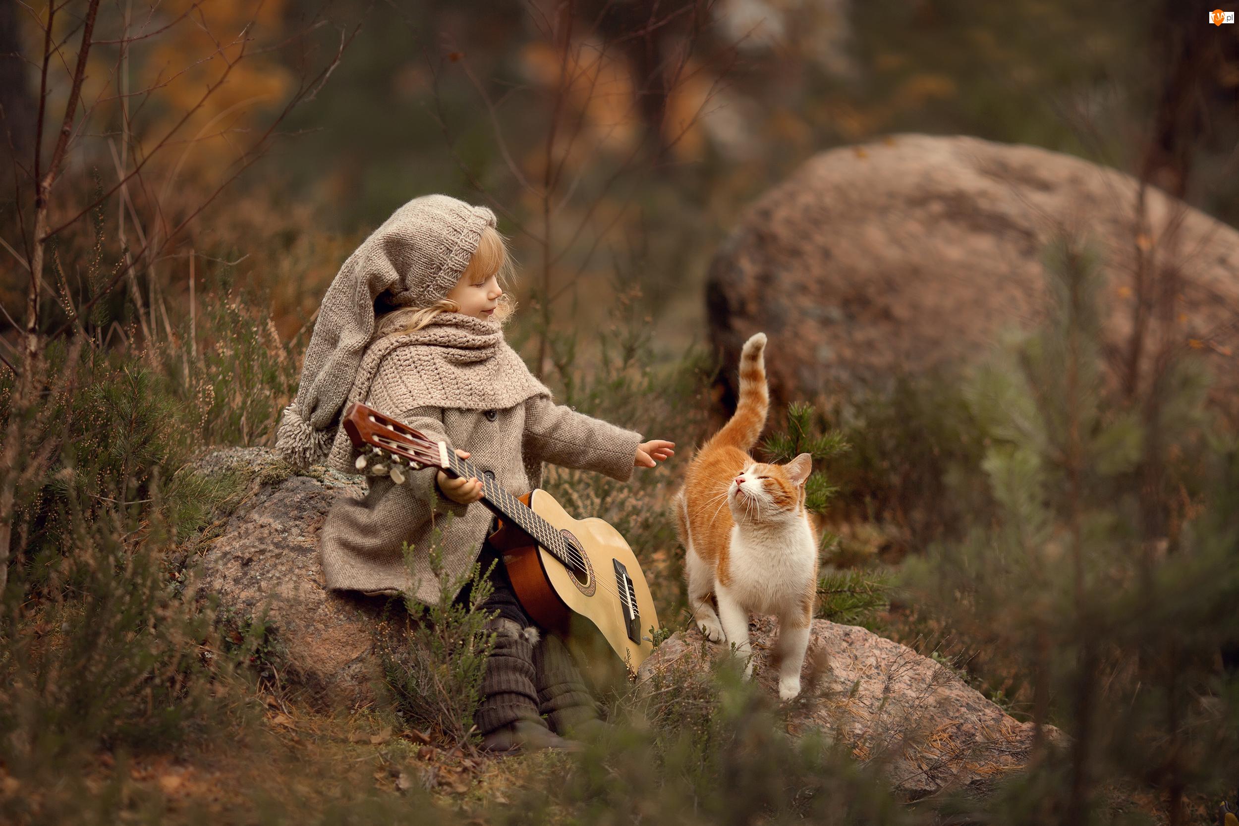 Kamienie, Jesień, Gitara, Dziewczynka, Kot
