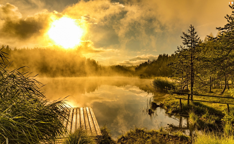 Mgła, Drewniany, Wschód słońca, Las, Jesień, Drzewa, Jezioro, Pomost
