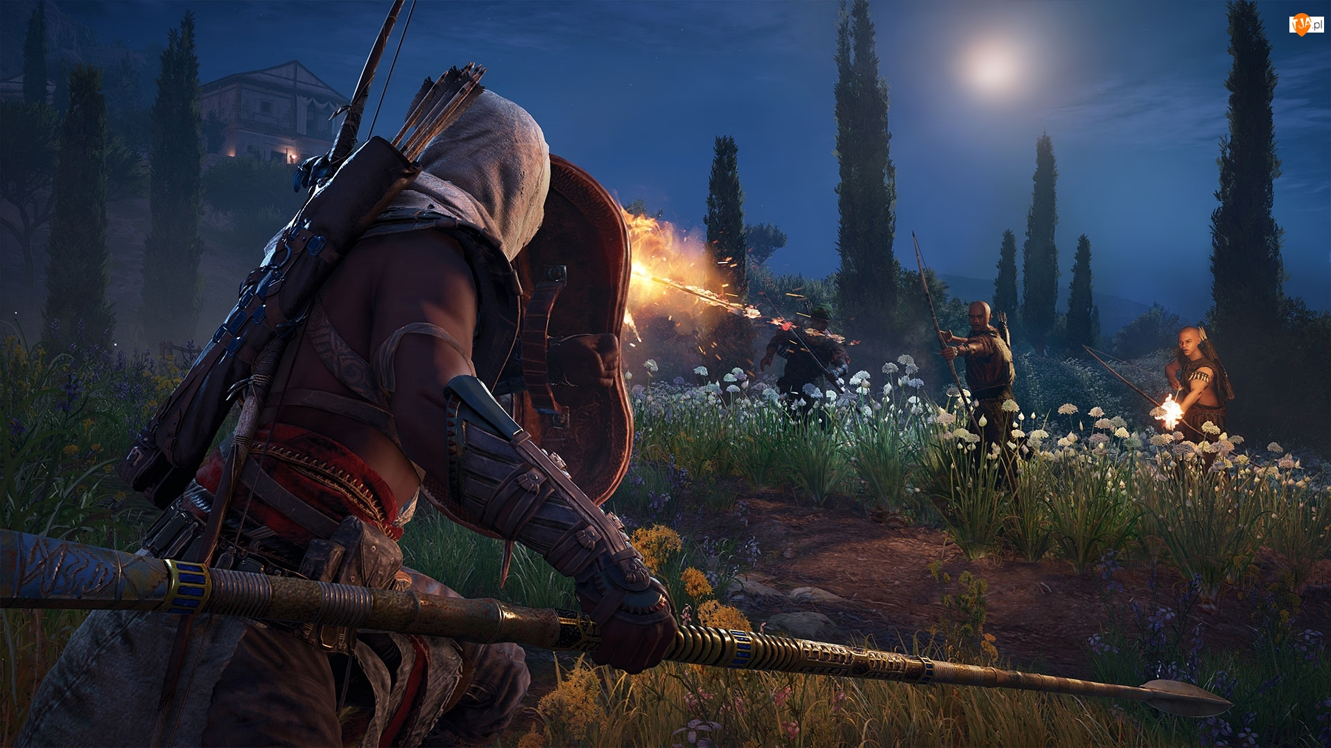 Walka, Gra, Bayek, Assassins Creed Origins, Łuk