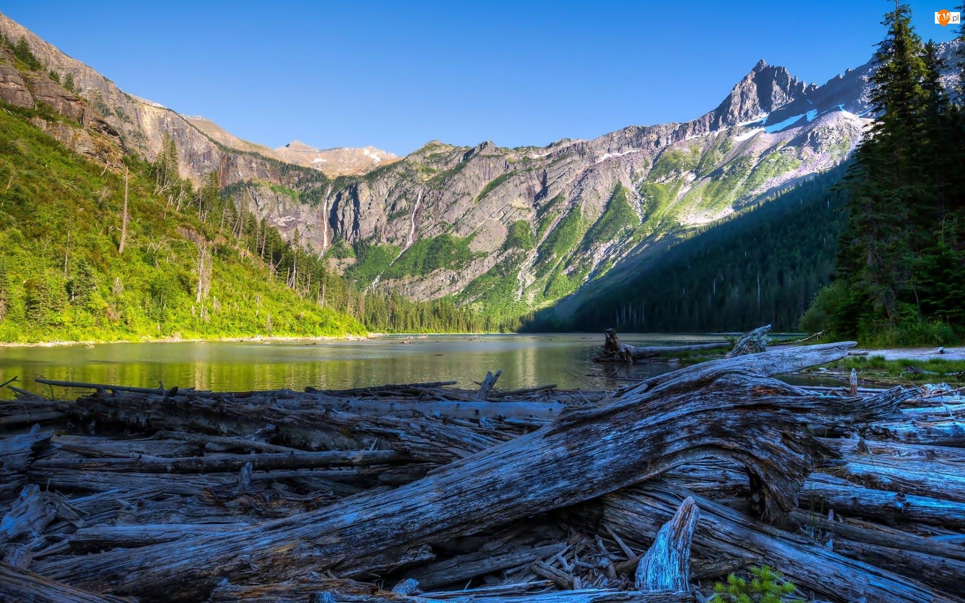 Park Narodowy Glacier, Góry, Stany Zjednoczone, Kłody, Stan Montana, Jezioro Avalanche
