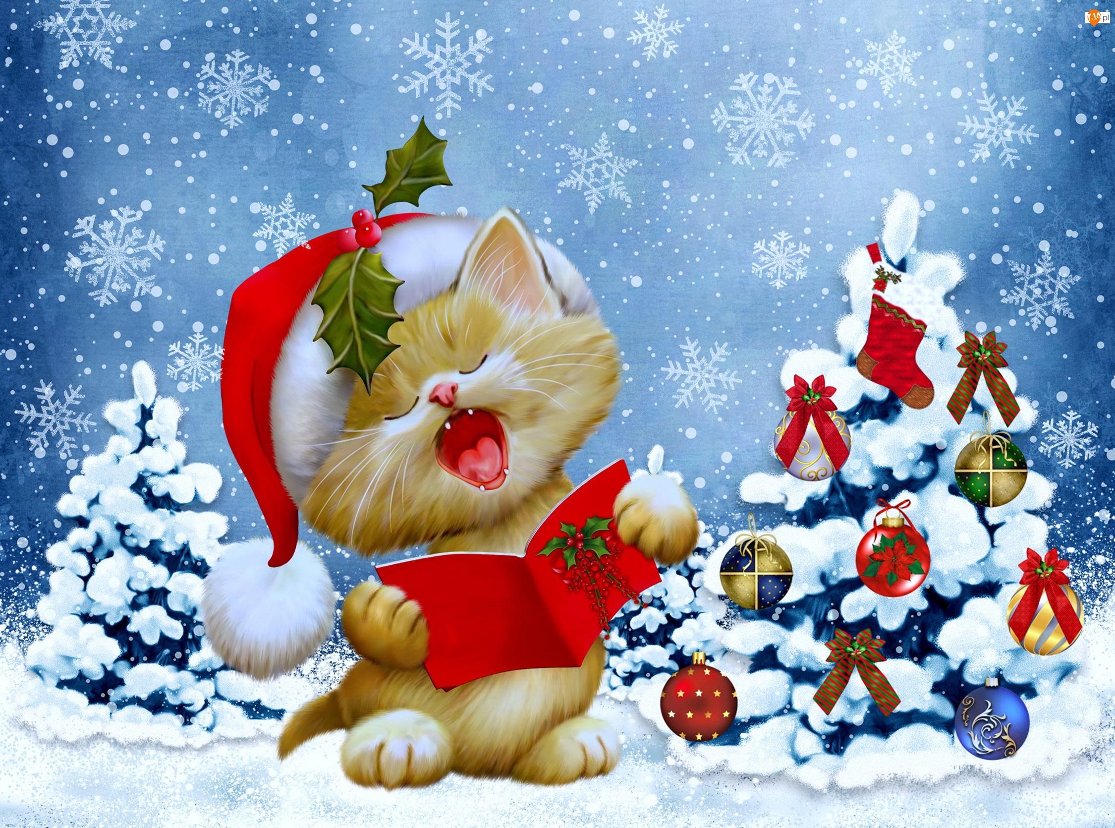 2D, Kotek, Choinka, Mikołaj, Boże Narodzenie