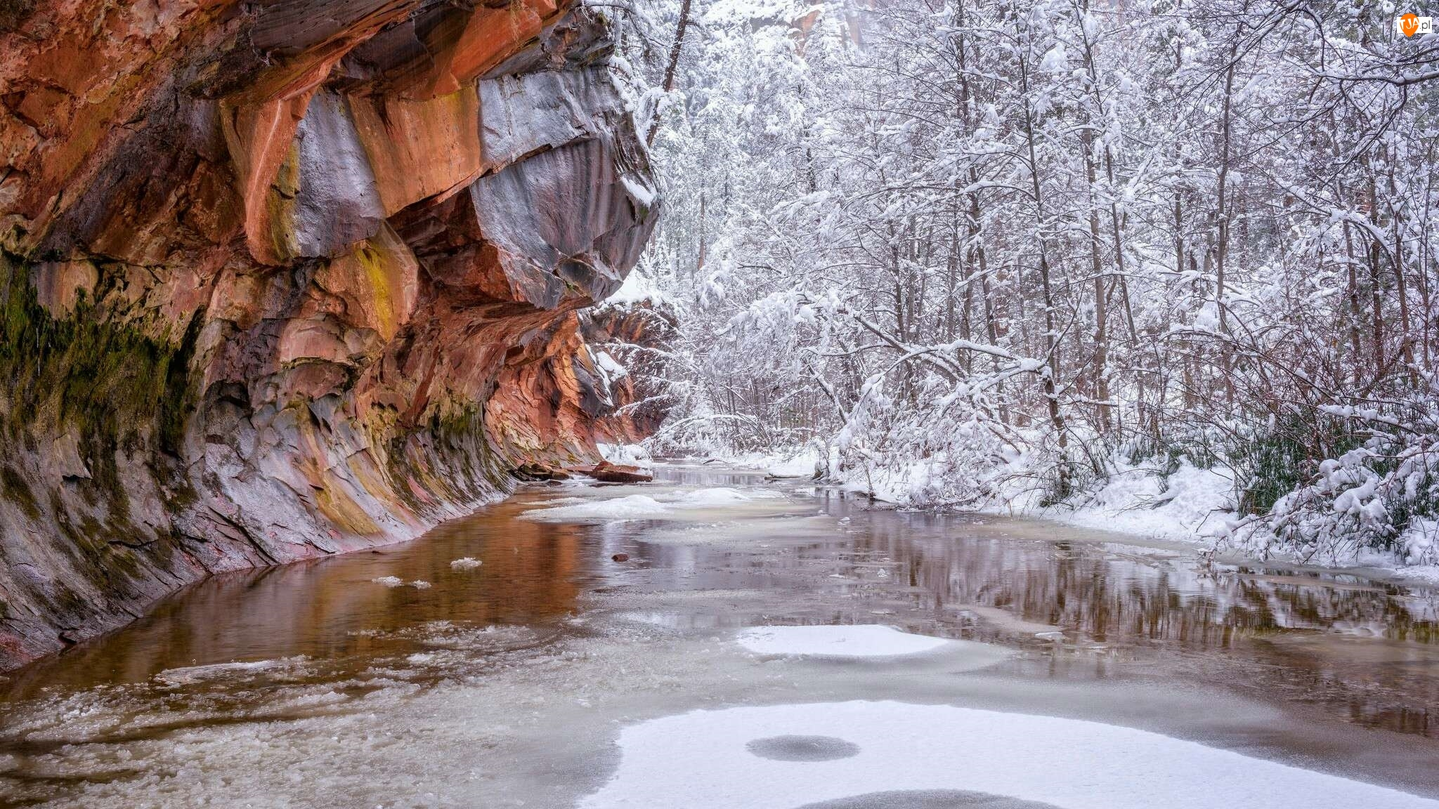Ośnieżone, Szlak West Fork Oak Creek Trail, Drzewa, Arizona, Rzeka Oak Creek, Stany Zjednoczone, Skały, Sedona, Zima