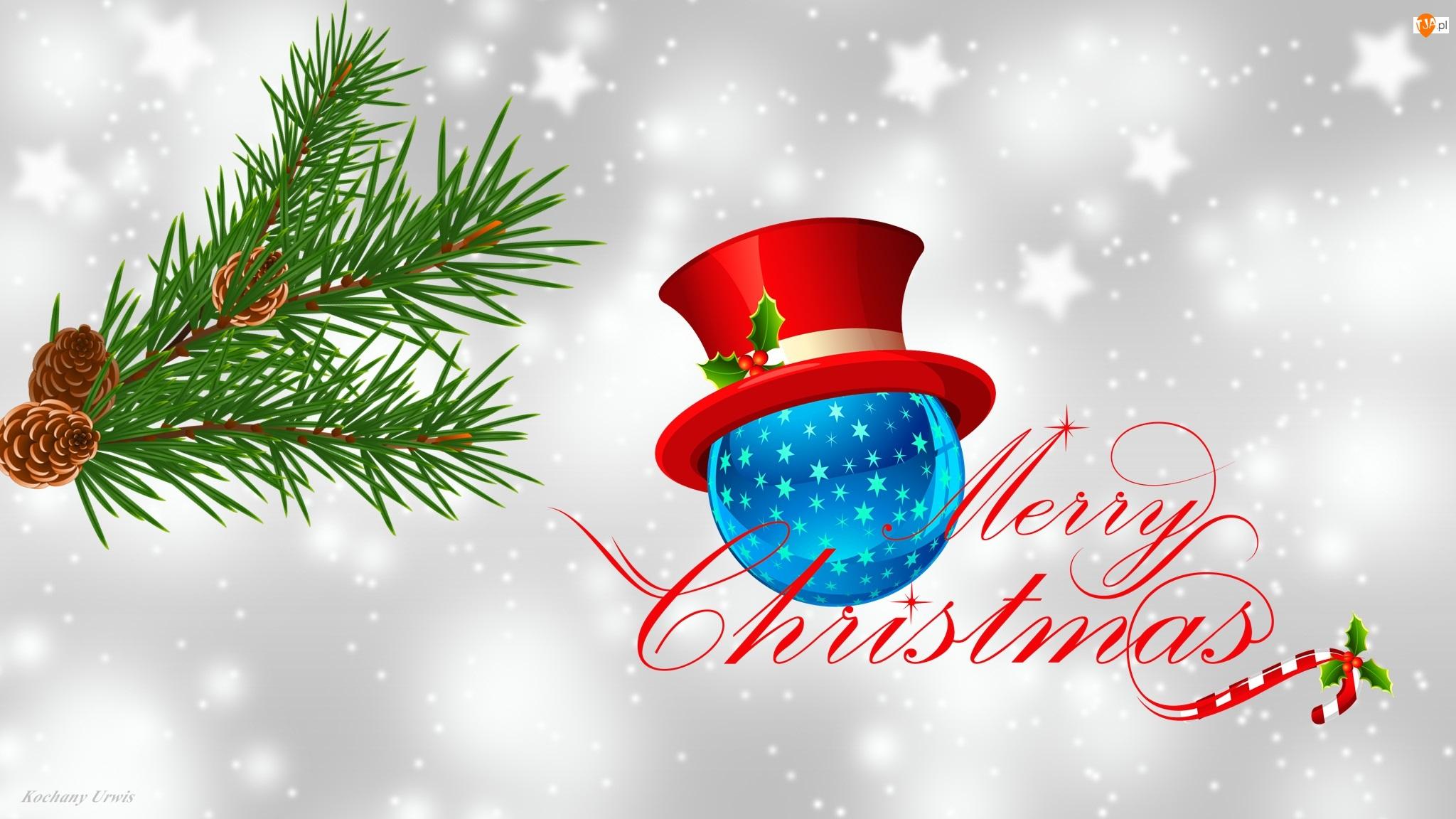 Szyszki, Gałązka, Napis, Grafika 2D, Boże Narodzenie, Merry Christmas, Świerku