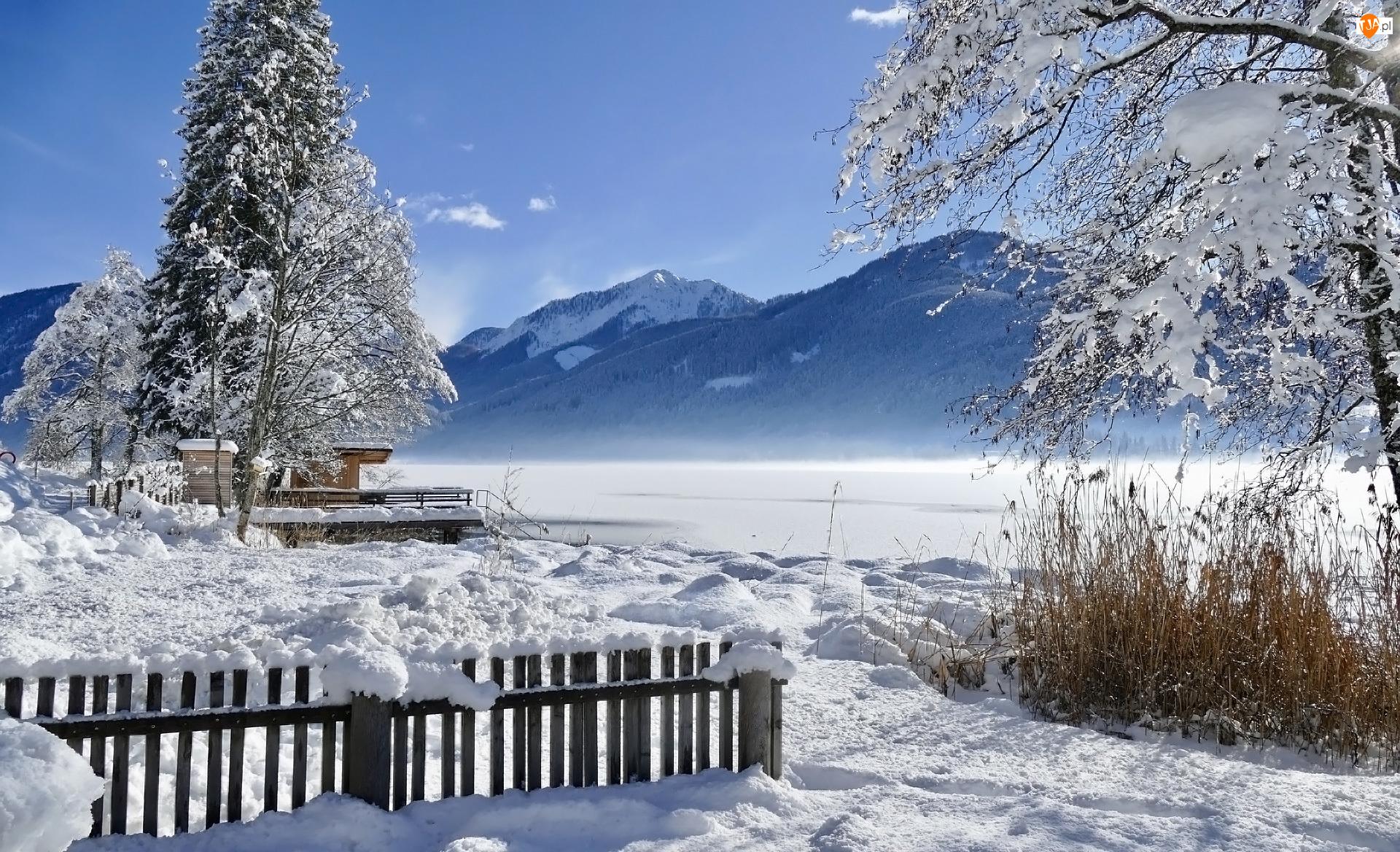 Zima, Ogrodzenie, Drzewa, Góry
