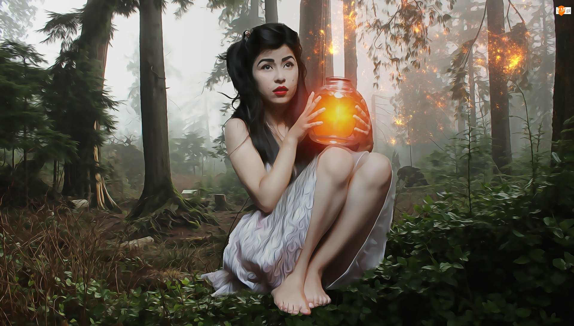 Światło, Kobieta, Las