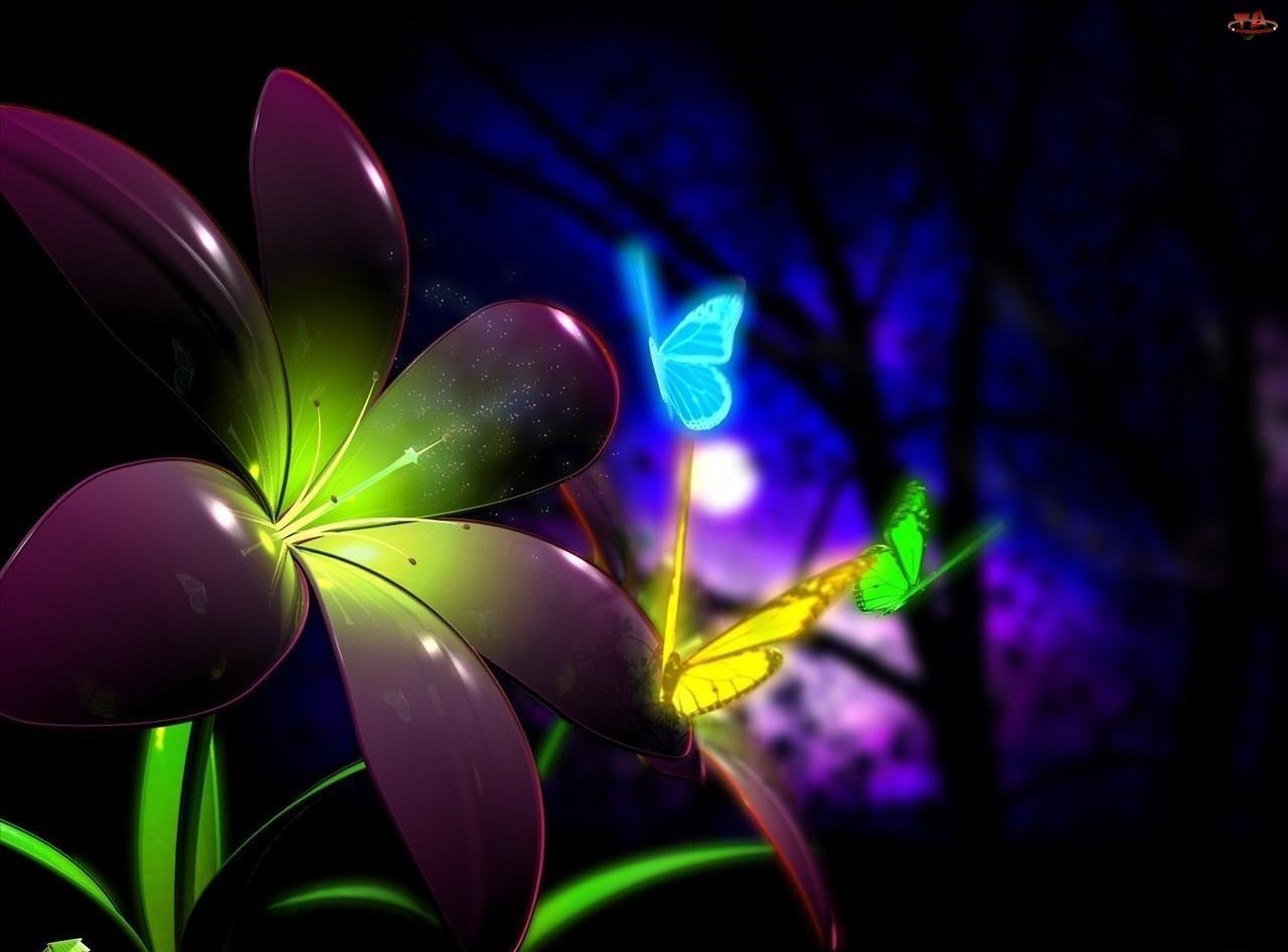 Kwiat, 3D, Motyle, Neon