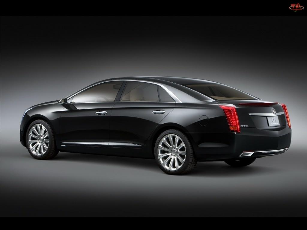 Platinum, Cadillac XTS, Wersja