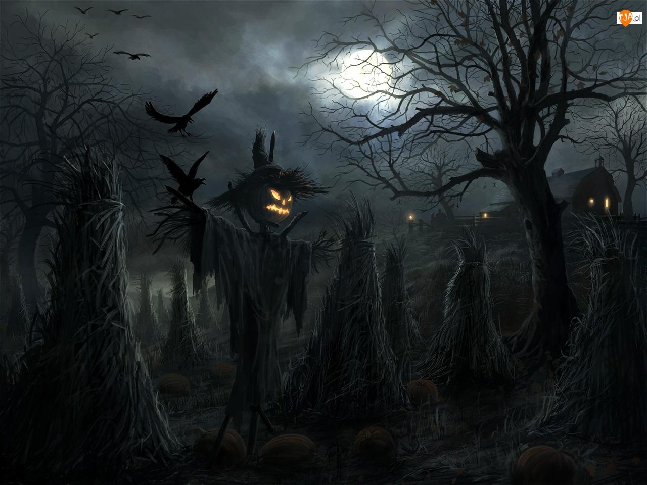Halloween, Chochoły, Strach