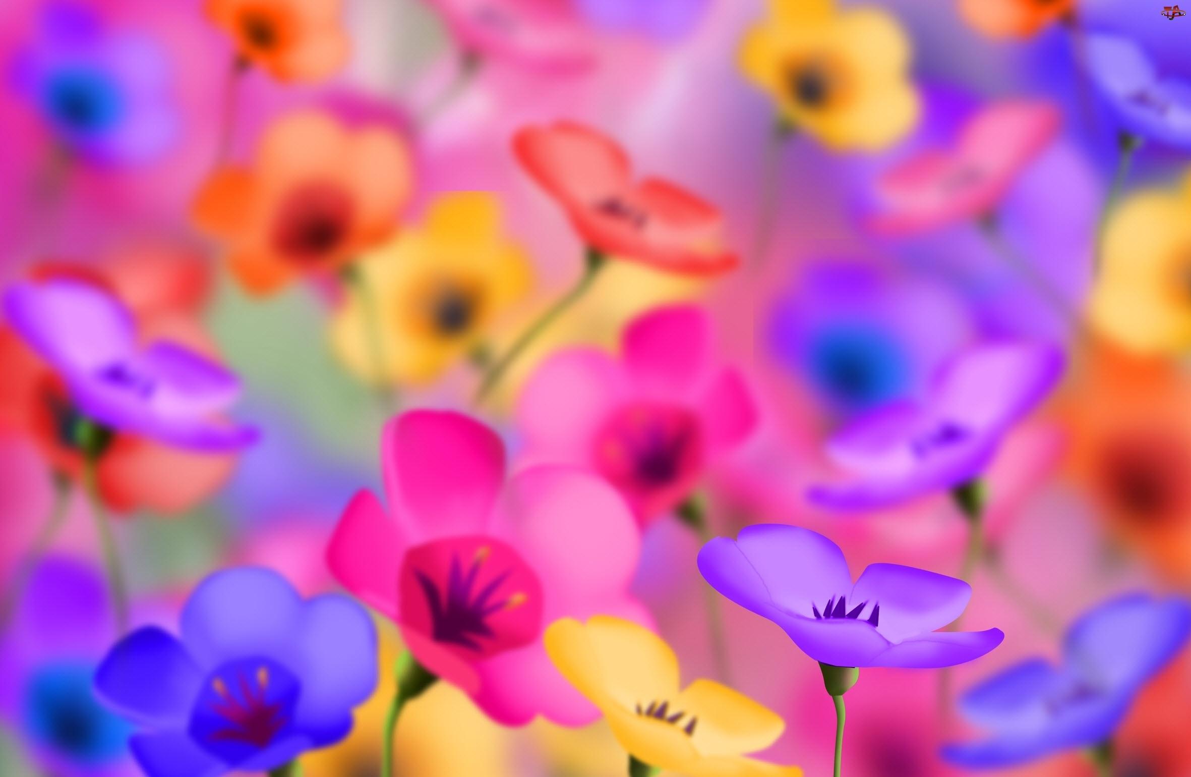 Яркие цветочки.
