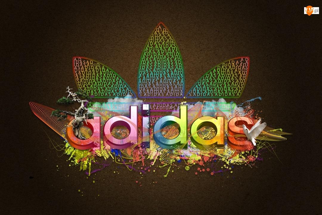 Kolorowe, Ptaki, Logo, Adidasa