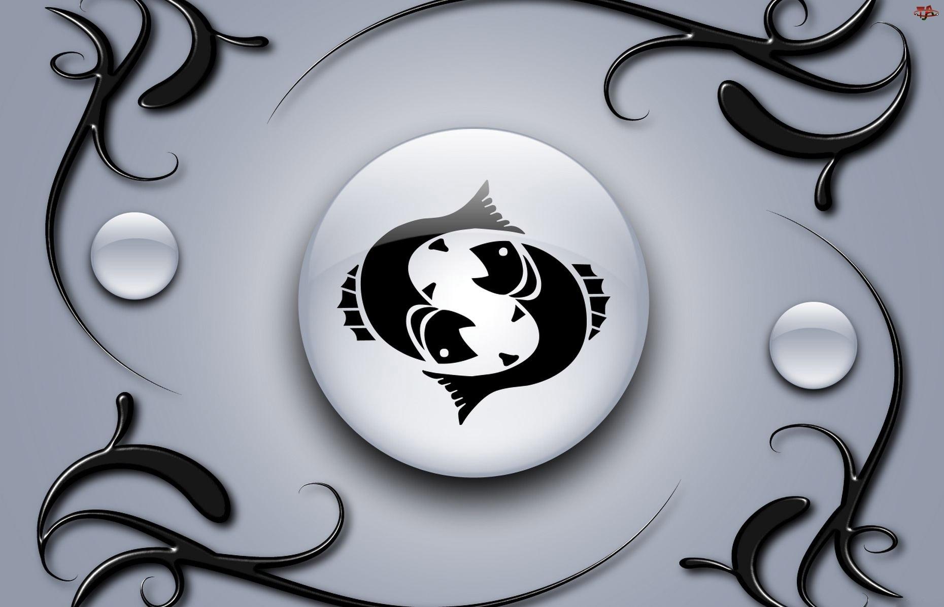 Znak Zodiaku Ryby Ryby Znak Zodiaku