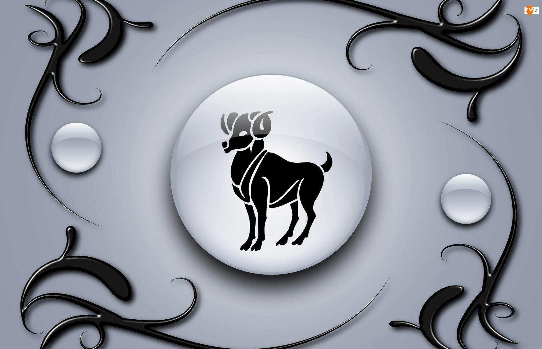 Znak Zodiaku Baran Baran Znak Zodiaku