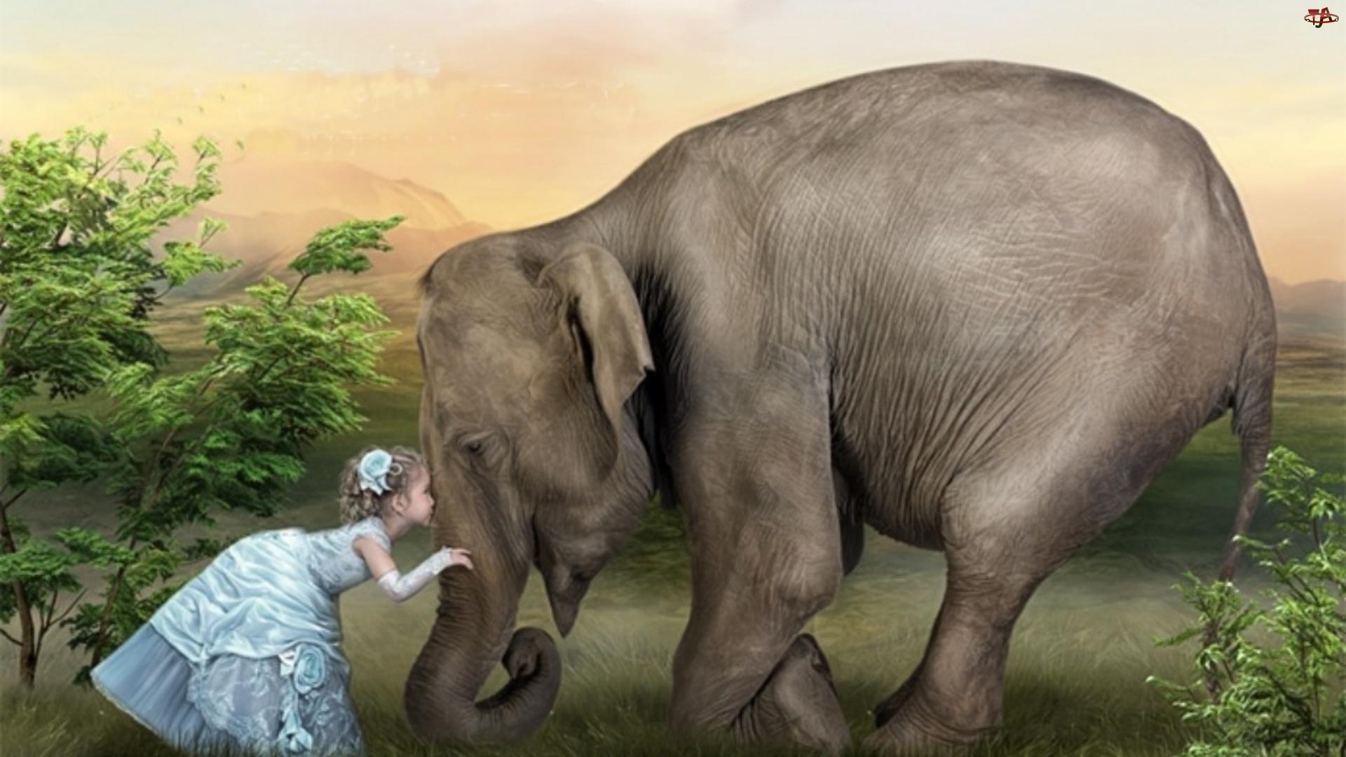 Член слона девушка 11 фотография