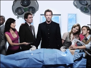 Hugh Laurie, Dr House, Aktorzy, Serial