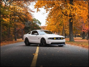 Ford 2009 Mustang
