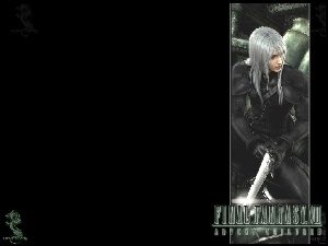 Ff 7 Advent Children, postać