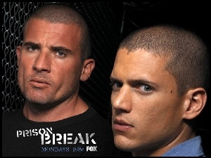 Prison Break, Wentworth Miller, siatka, Dominic Purcell