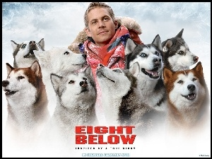 psy, Eight Below, Paul Walker