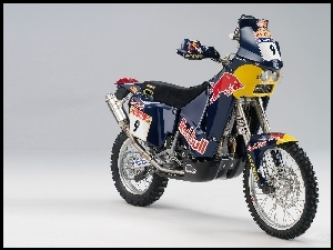 Red Bull, KTM 660 Adventure, Team