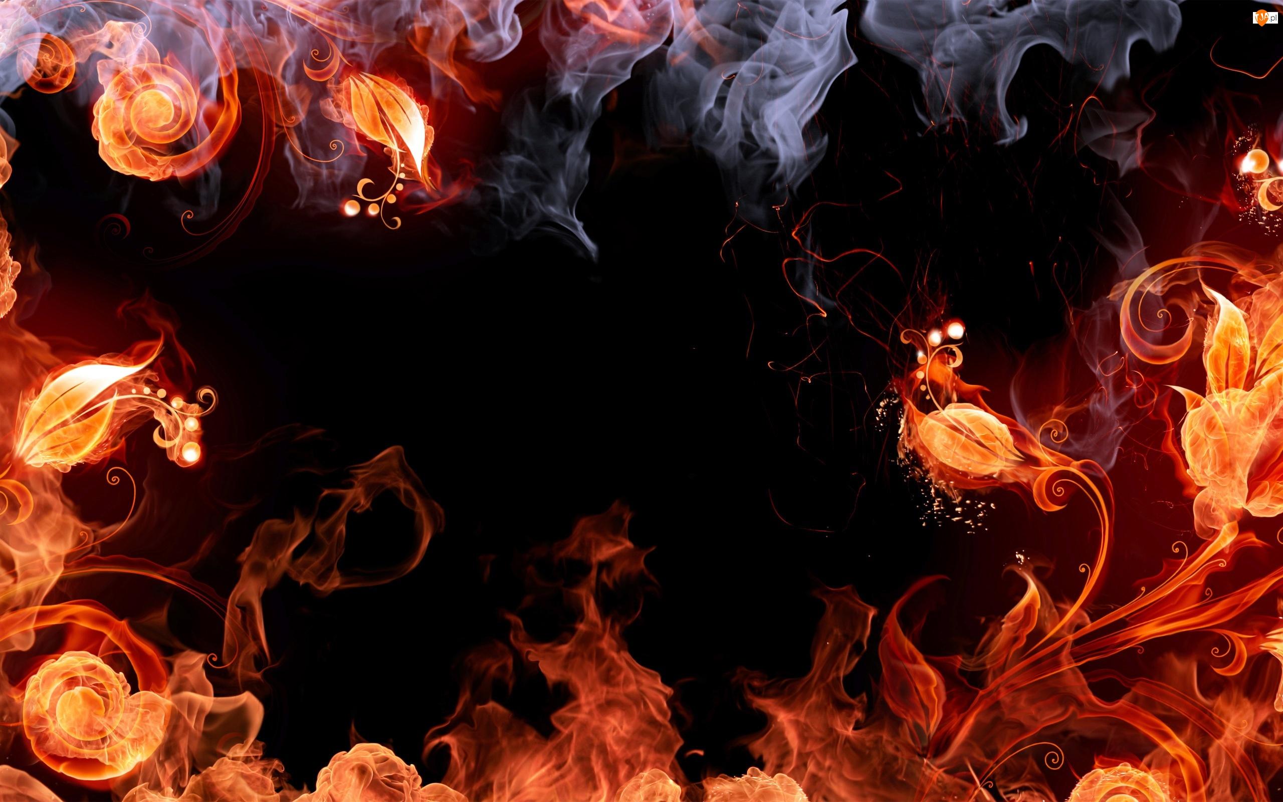 Ogień, Kwiaty, Płomienie, Dym