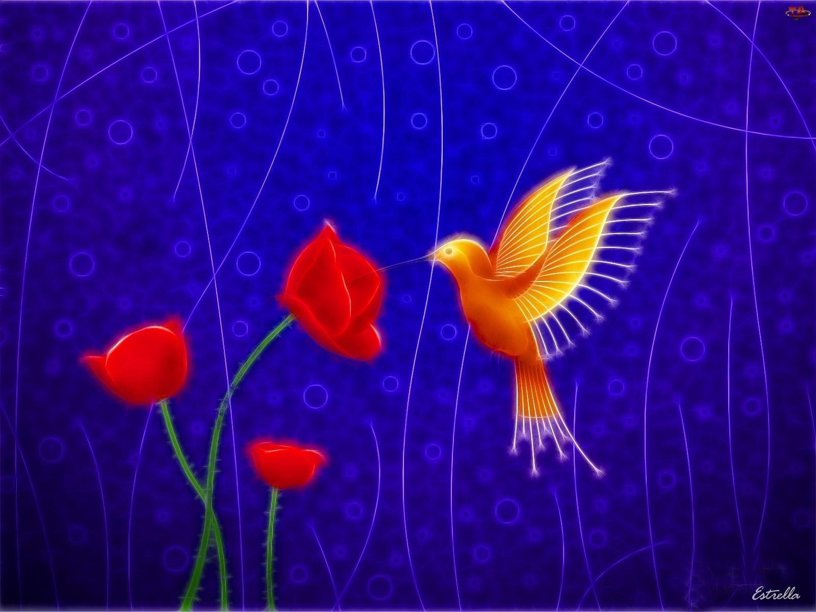 3D, Ptak, Granatowe, Kwiaty, Tło