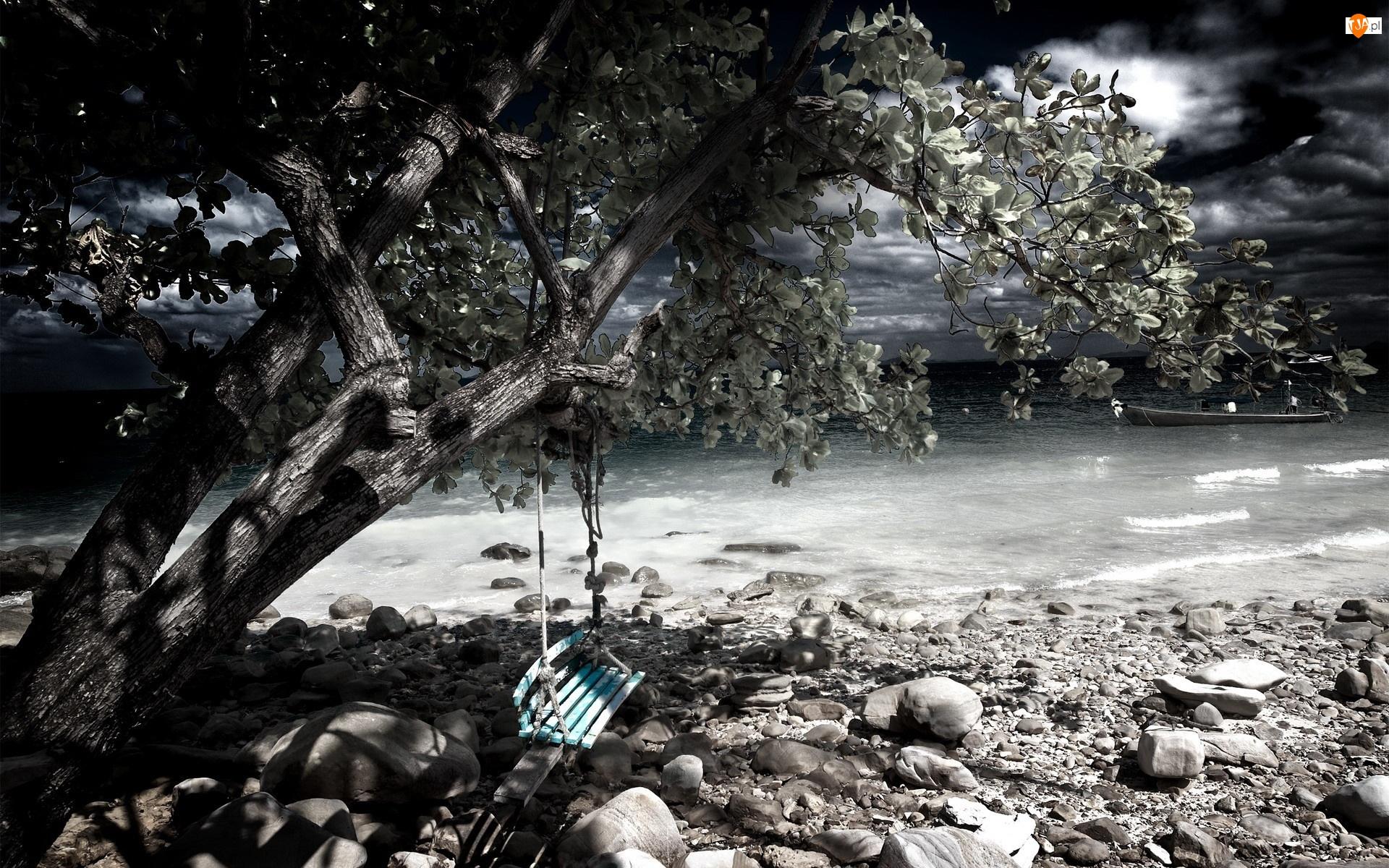 Kamienie, Drzewo, Huśtawka