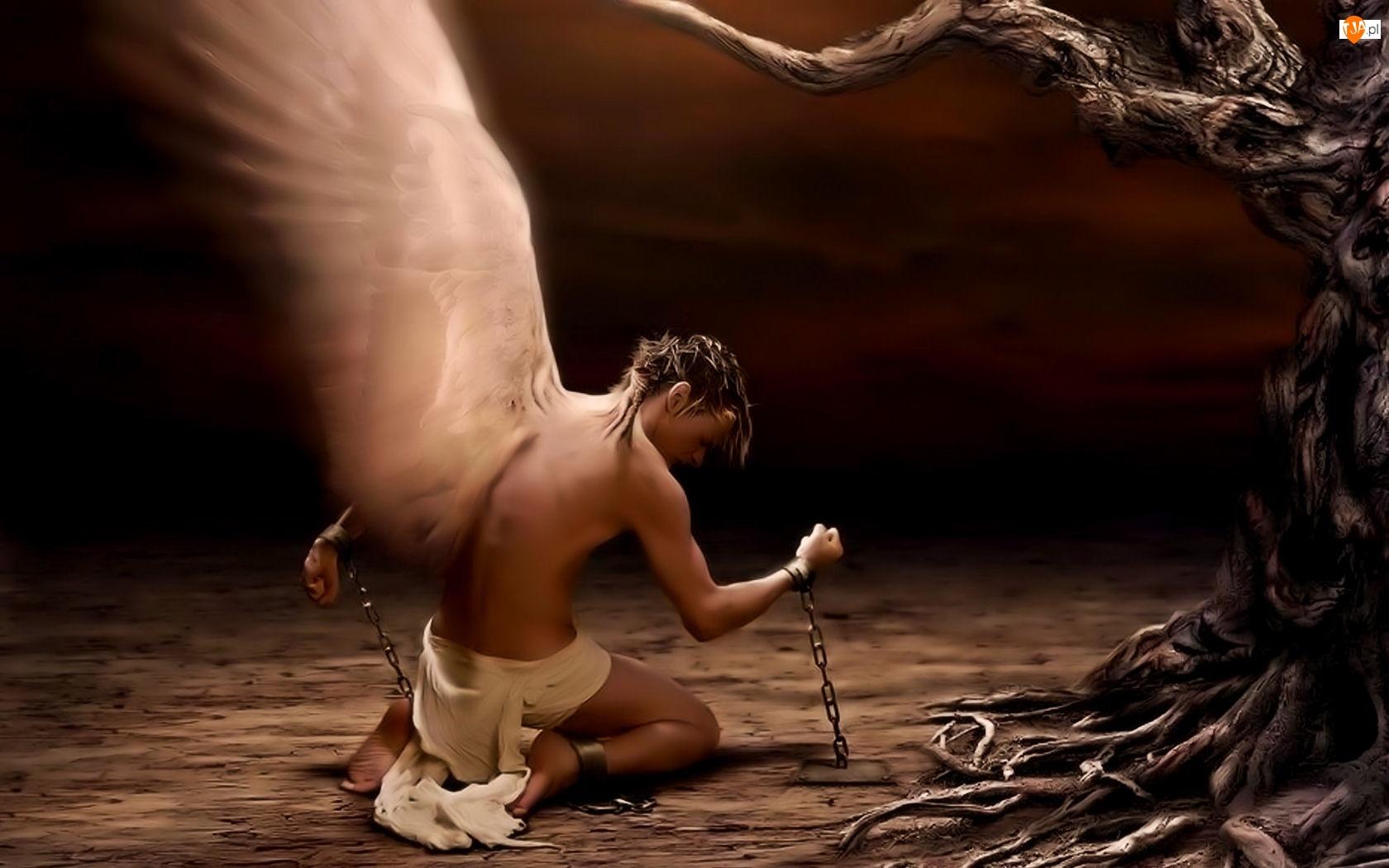 Anioł Mężczyzna Skrzydła
