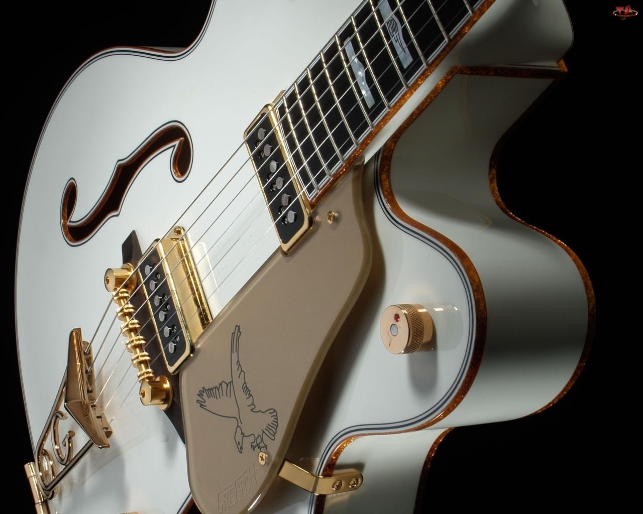 Biała, Gitara