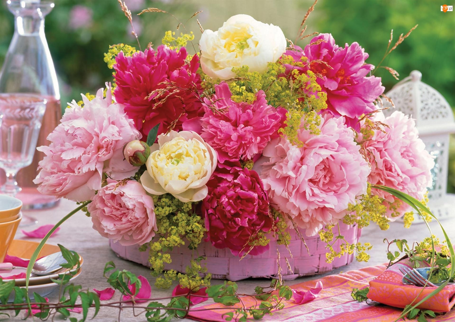 Kwiatów, Piwonie, Bukiet
