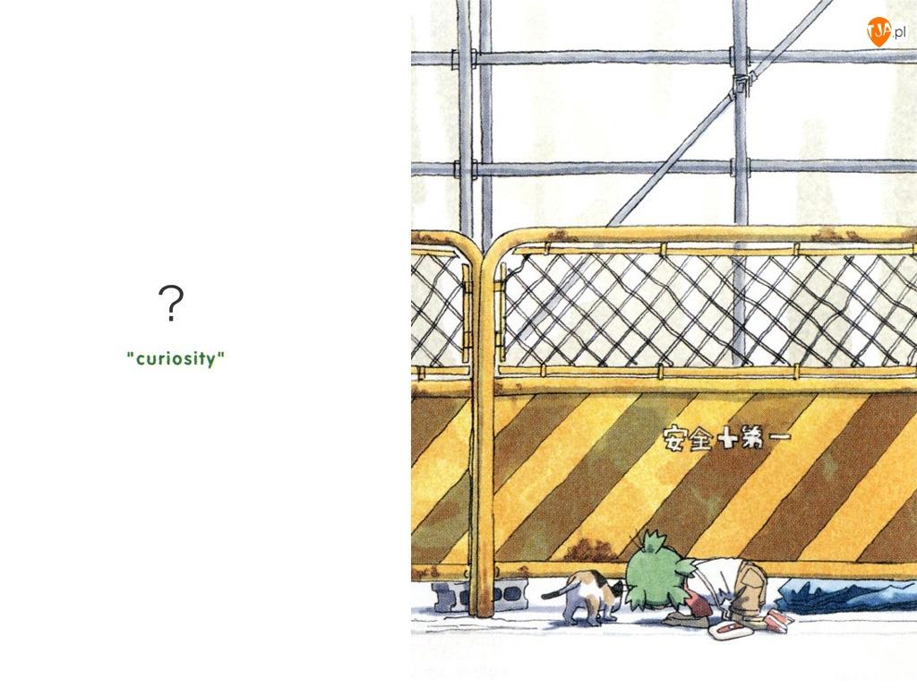 Yotsubato, ogrodzenie, kot