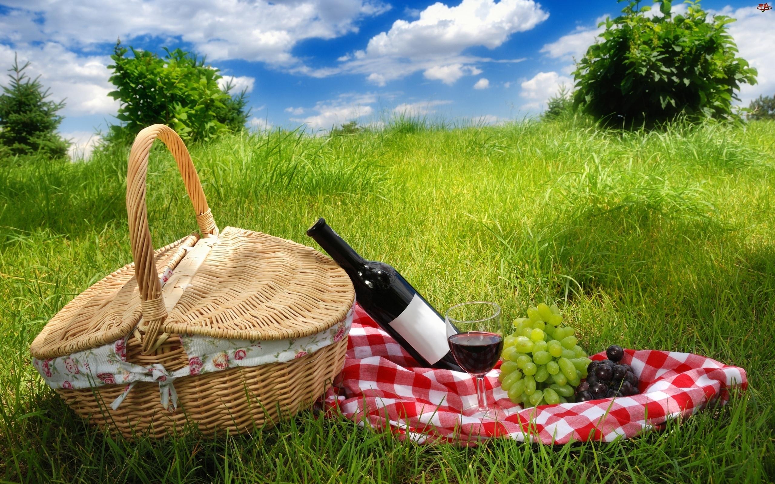 Piknik, Trawa, Wino, Koszyk, Winogrona