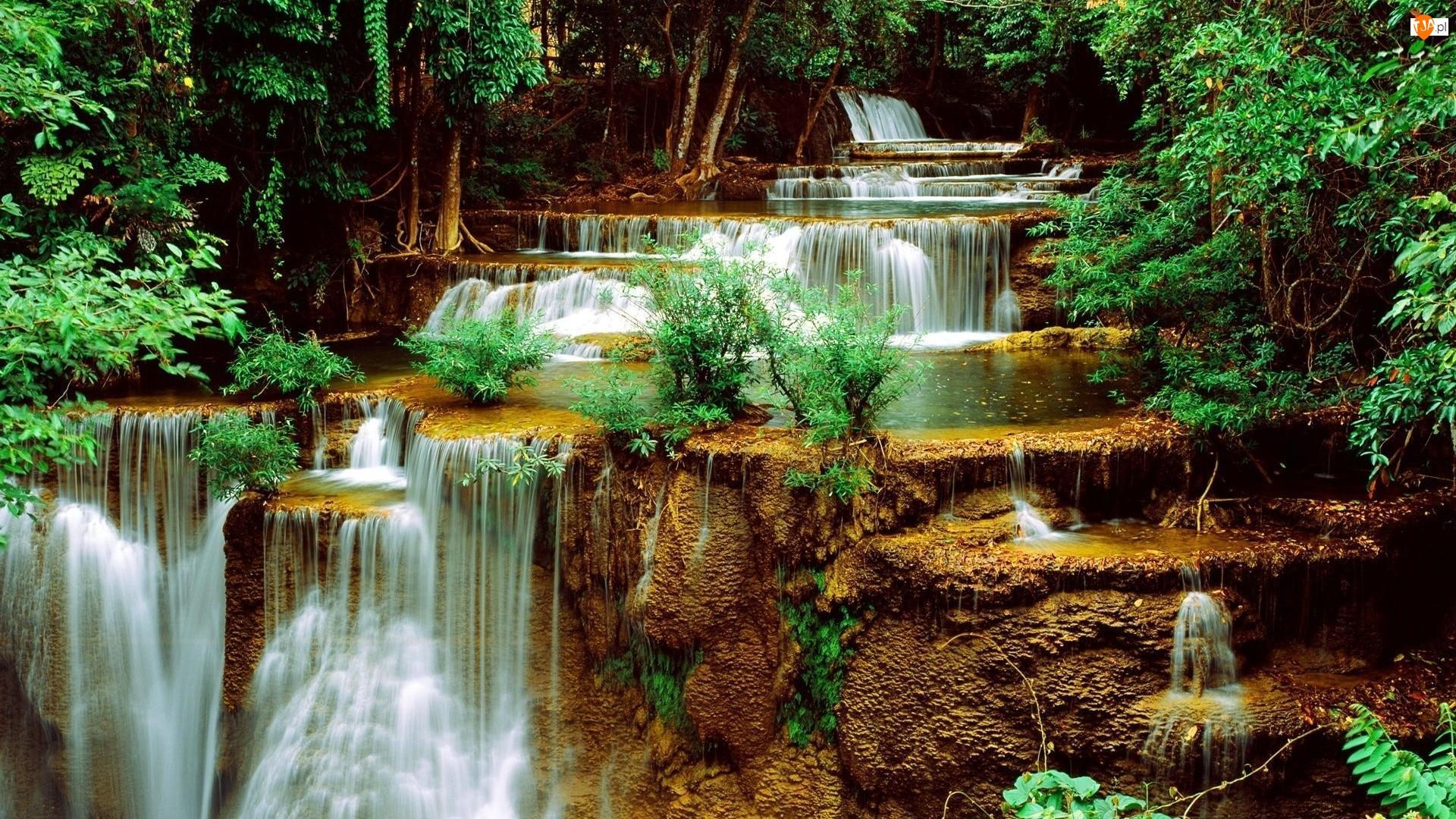 Skalne, Zieleń, Stopnie, Wodospady