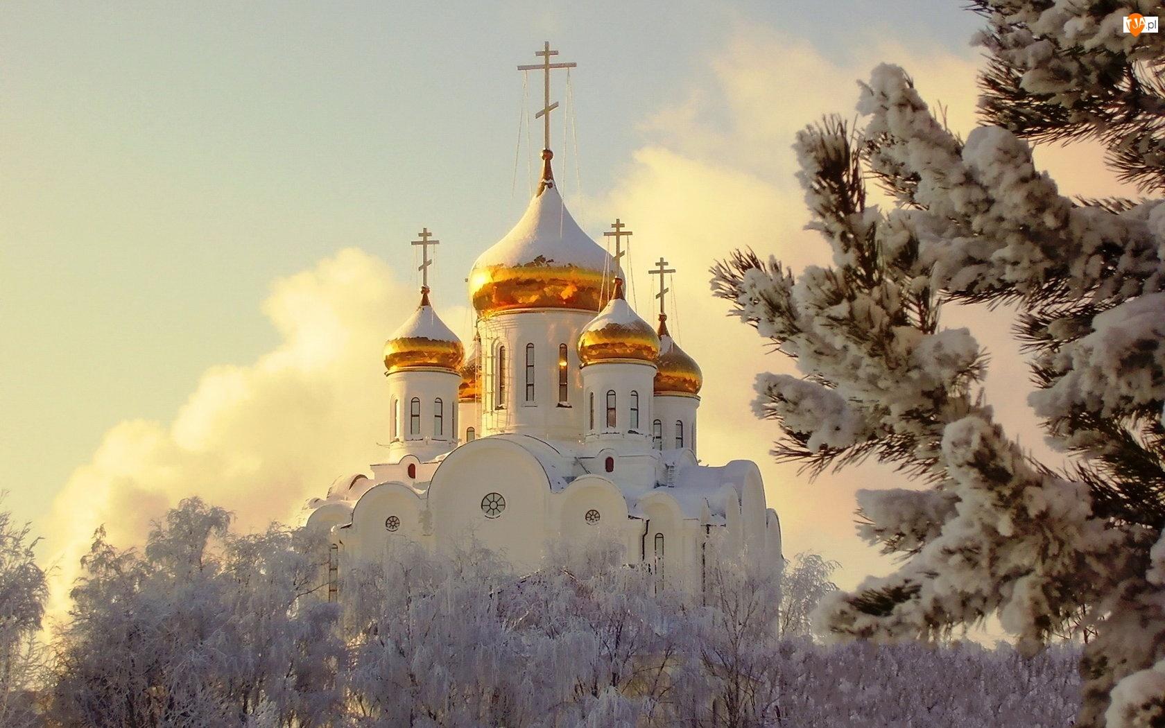 Drzewa, Kościół, Cerkiew